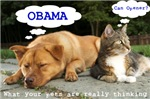 What Your Pets are Really Thinking...