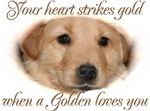 When a Golden loves you
