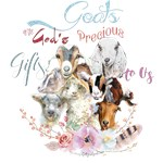 Goats are God's Precious Gifts |  A Get
