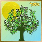 12 Tribes Israel Asher