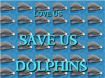 Love Us Save Us Dolphins