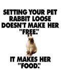 Setting your pet rabbit lose doesn't make her free