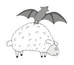 Fruit Bat and Sheep