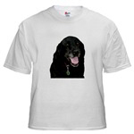 Faithful Friend Shirts