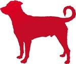 Rottweiler (Undocked Tail)
