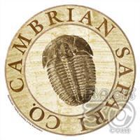 Cambrian Safari Company
