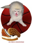 Basketball Ferret