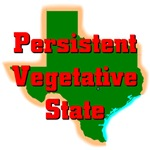 Texas - Persistent Vegetative State