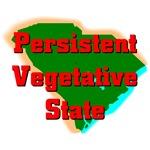 South Carolina - Persistent Vegetative State