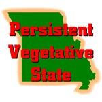 Missouri - Persistent Vegetative State