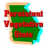 Georgia - Persistent Vegetative State
