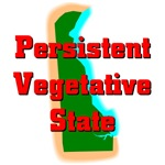 Delaware - Persistent Vegetative State