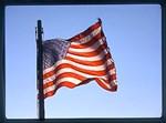 Flag: America!