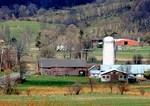American Barns No. 8