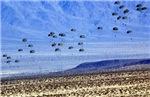U S ARMY RANGERS