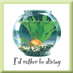 I'd Rather be Diving