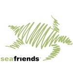 SeaFriends-Turtle