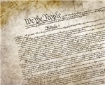 Constitution All Over Print
