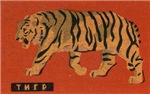 Tiger Matchbox Label
