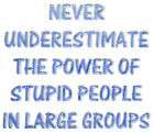 The Power Of Stupid People