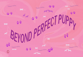PETS/BEYOND PERFECT PUPPY