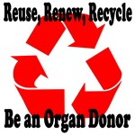 Reuse, Renew, Recycle