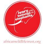 Ivory only belongs...