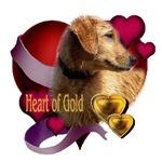 Golden Retriever Heart Of Gold
