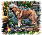 Leonberger Owners Gifts of Art