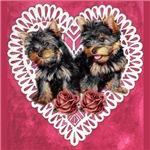 Yorkie Valentines Day