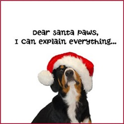 Dear Santa Paws, I've been a very good Entle