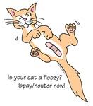 Floozy Cat