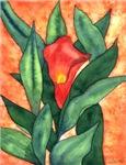 Red Calla Lily Watercolor
