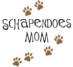 Schapendoes Dog