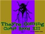 Cicadas They're Coming