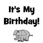 It's My Birthday! w/ Elephant