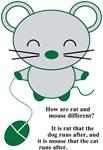 Chootan & mouse