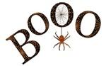 Black Boo w/Spider