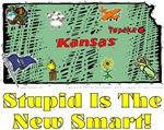 KS - Stupid Is The New Smart!