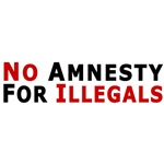 Immigrant No Amnesty D24
