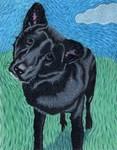 Arlo Jean, the dog