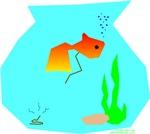 Fish Make Poopie!