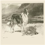 Collie 1890 Digitally Remastered