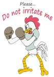 rooster in gloves