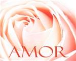 Amor Love Rose in Spanish