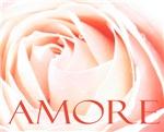 Amore Italian Love Rose
