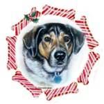Mixed Breed Christmas