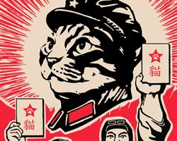 Follow Chairman Meow