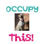 Occupy This Dog!