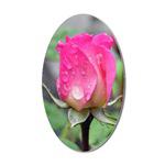 ...Rose 01...